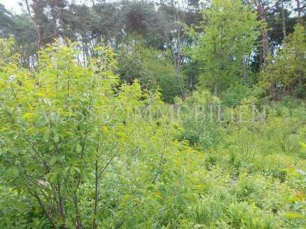 Kleines Grundstück am Wald