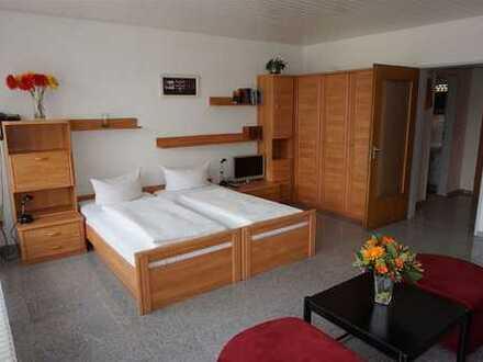 1-Zimmer-Appartement mit Ausblick