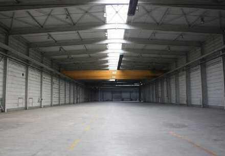 TASDORF - SÜD | ca. 6.350 m² | LAGER | PRODUKTION