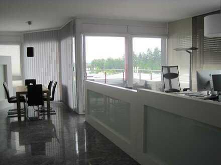 Wohntraum für gehobene Ansprüche: Helles Penthouse mit Terrasse - auch als Geschäftsräume nutzbar