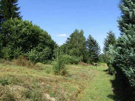 Leben Sie naturnah in Ihrem eigenen neuen Heim in Chemnitz-Altenhain
