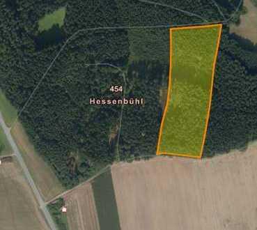 Waldgrundstück in Altmannstein - Gemarkung Schafshill