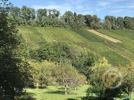 Wunderschön gelegenes Gartengrundstück mit Blick auf die Weinberge zwischen Korb und Hanweiler!