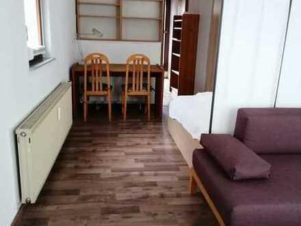 Geräumige und möblierte, gepflegte 1-Zimmer-Erdgeschosswohnung in Weil der Stadt - Merklingen