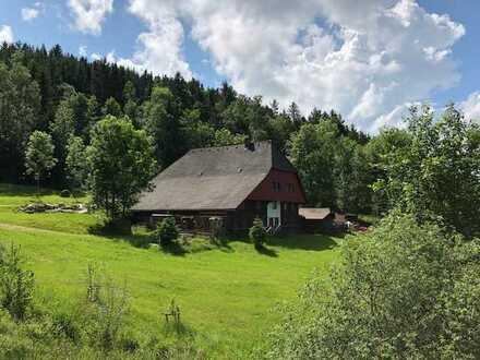 Haus - Schwarzwälder Bauernhaus mit schönem Fischweiher und Hallenstellplatz im Grünen
