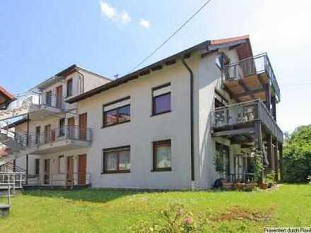 super sonnige 1-Zimmer Wohnung mit Traumausblick in Balg