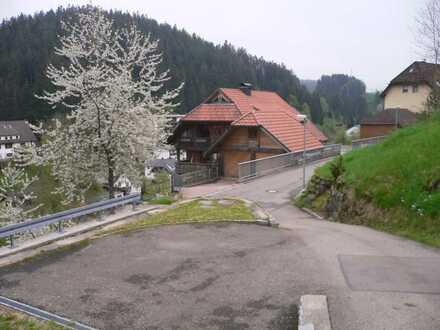 helle und sonnige 78m² 2 ZWhg. in Gütenbach