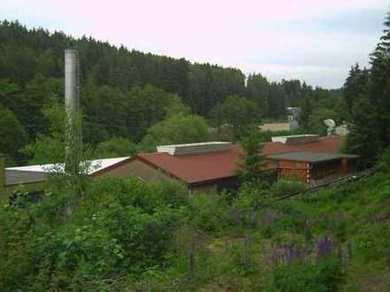 Riesenflächen zum kleinen Preis   Anwesen mit Halle, Büro, Wasserkraftwerk in der Oberpfalz