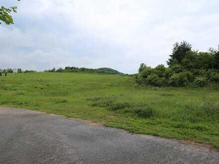Attraktives Grundstück mit vielen Nutzungsmöglichkeiten im Mischgebiet