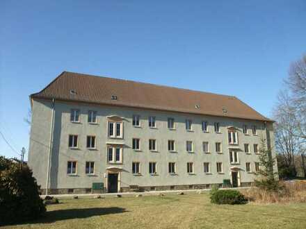 Eigentumswohnung in Oelsnitz/Erz. OT Neuwürschnitz