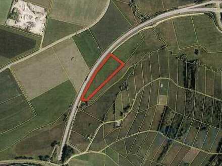 Landwirtschaftliches Grundstück in Peiting