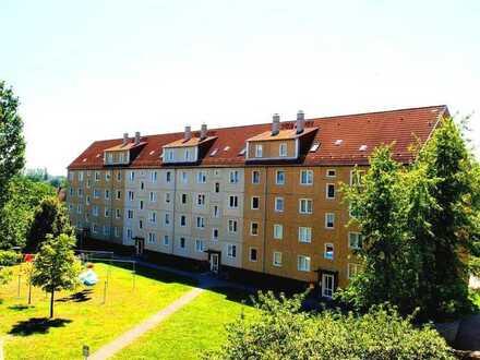 **NEU renovierte 3-Raum-Wohnung im Erdgeschoss mit Balkon!**