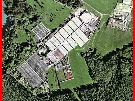 10 ha Grundstück - Verwaltungsgebäude, Büros - Lagerhalle - Freiflächen - Gewächshäuser