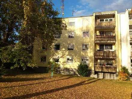 Gepflegte und modernisierte 4-Zimmerwohnung in Landau - Horst