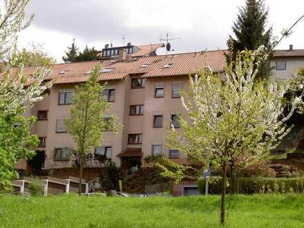 Schöne 2-Zimmer-Wohnung mit Balkon und EBK in Pforzheim