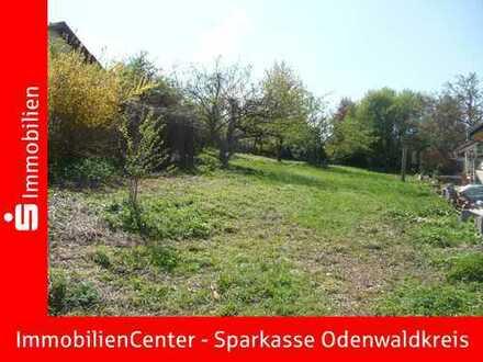 Tolles Baugrundstück in Randlage von Dorf-Erbach!!