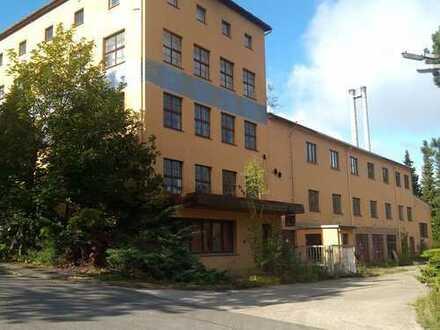 Historische Fabrik in Seiffen