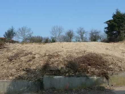 2 x 1250 m2 Baugrundstücke in Bruchsal Kernstadt alternativ 2500m2 Baugrundstück