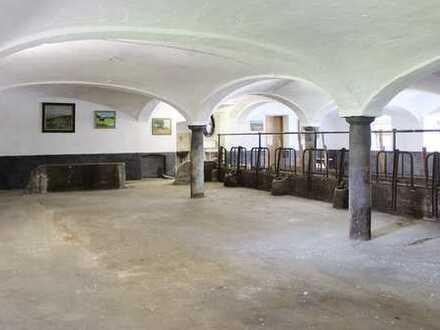 144 m2 großer Pferdestall mit 6000 m2 großer Koppel und Sandplatz am Samerberg