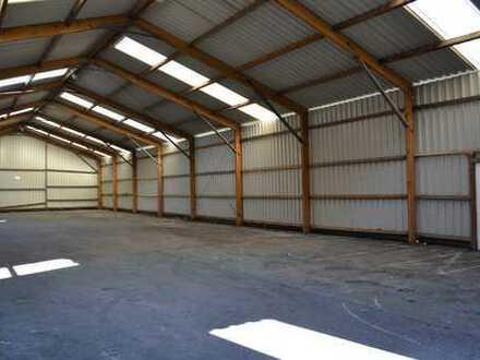 Kaltlagerhalle provisionsfrei zu vermieten