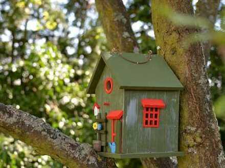 Jeder sollte ein Haus haben. Ausbauhaus von Bien-Zenker!