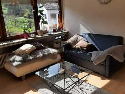 Schöne 2-Zimmer-Wohnung mit Balkon und Einbauküche in Neckargemünd Ortsteil Mückenloch