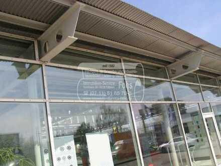 Halle im E G (1.714 m²) + 54 Parkplätze + GE-Grundstück 5.819 m² nahe B 30 in 88471 Laupheim