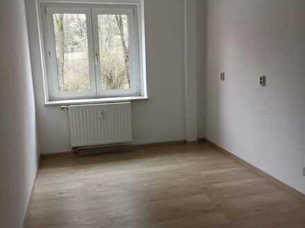 !! 1 MONAT KALTMIETFREI !! 2 Zimmer Hochparterre Wohnung frisch saniert
