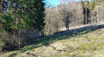 Land- und Forstwirtschaftliche Fläche in Lichtenau
