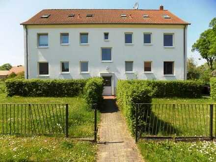 + Maklerhaus Stegemann + renovierte 3-Zimmer Wohnung auf dem Lande