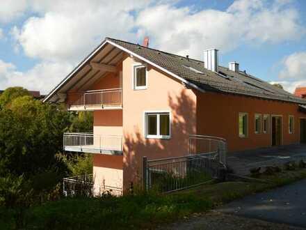 Erstbezug nach Renovierung-großzügige 3 Zimmerwohnung in Stamsried-