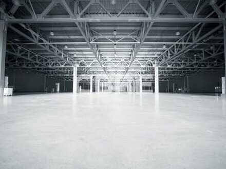 Top: Lager- und Produktionshallen zu verkaufen, Neubau!