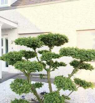 Next to International School in Kaiserswerth