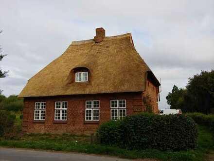 Erstbezug nach Totalrenovierung eines schönen, reetgedeckten Hauses mit großem Garten