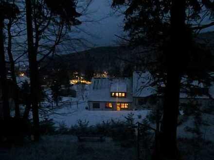 NEU!Wintersportler und Wandervögel aufgepasst! Wunderschöne 3-Zimmer Wohnung in Holzhau zu vermieten