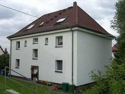 Geräumige 3-Raum-Wohnung in ruhiger Lage - in Wilkau-Haßlau