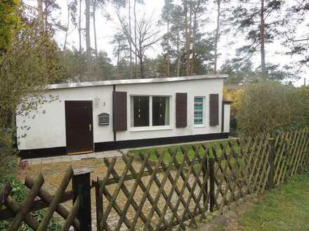 Idyllisches Ferienhaus mitten im Wald und direkter Lage am Plattensee. Was gibt es Schöneres?