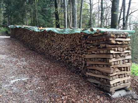 2,7 ha Waldfläche in Brandenburg!