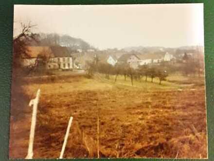 Baugrundstück in Leitzweiler TOP Lage 3521qm Rhein-Hunsrück-Kreis