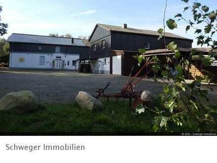 2 Mehrfamilienhäuser mit landwirtschaftlichen Flächen im schönen Treenetal von Stapel zu verkaufen