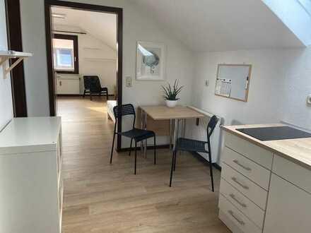 Stilvolle, geräumige und gepflegte möblierte 1-Zimmer-DG-Wohnung, EBK und Stellplatz in HEIDELBERG