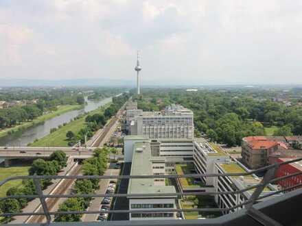 Traumhafter Ausblick auf Neckar und Fernsehturm in Mannheim