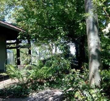 WG-Zimmer, ruhige, Zentrum nahe Lage, Garten- u. Keller-Mitbenutzung, Bus nach Ingolstadt-Mitte 400m