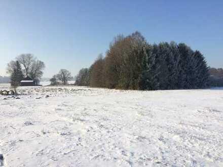 Freizeitgrundstück 7400 qm mit Wald Nähe Ammersee