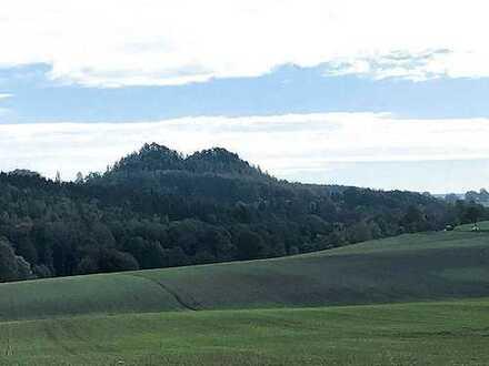 Grundstück mit zwei Spitzkegelhalden in Neuensalz (bei Plauen)
