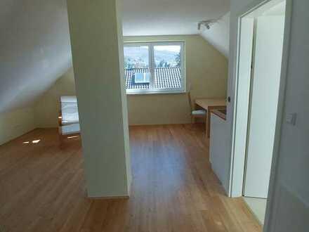 Erstbezug: 1-Zimmer-Dachgeschosswohnung in Seeheim (Einbauküche+teilmöbliert)