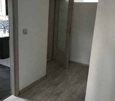 Erstbezug nach Sanierung: ansprechende 2-Zimmer-DG-Wohnung in Osthofen