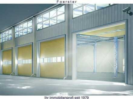 Neubau Pultdach Hallen ab 112m²,175m²,224m²,336m²bis 511m²zu mieten Neubauhalle in Niefern-Ö, B10...