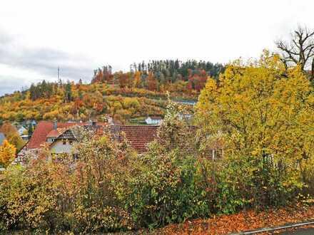 Willkommen im idyllischen mittleren Neckartal: