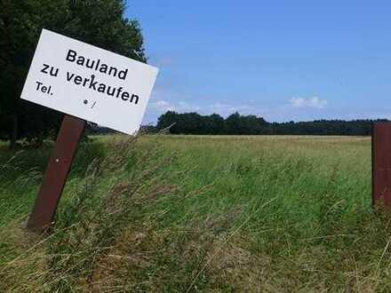 Ruhig gelegenens Baugrundstück nahe Perleberg - aktuelle Bauvoranfrage liegt vor